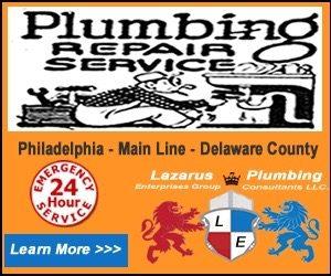 300x250 plumbing repair Banner.fw